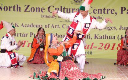 जम्मू में 25 फरवरी, 2018 को एनजेडसीसी द्वारा आयोजित आदिवासी महोत्सव का दिन 3 (27/02/2018)
